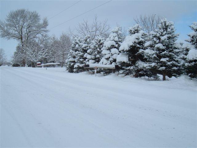 Ontario snow 1