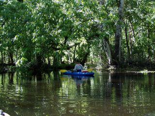 Hillsborough River State Park Photo 2