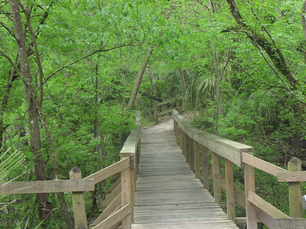 Hillsborough River State Park Photo 1