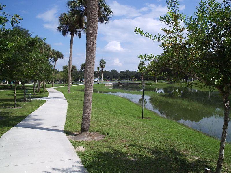 Path and Palm Trees - Mine