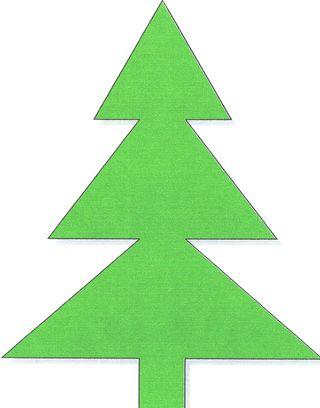 Pine Tree - Mine0001