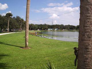 Lake and Walk