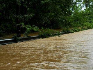 Flooding 3 - Aimee Mixner