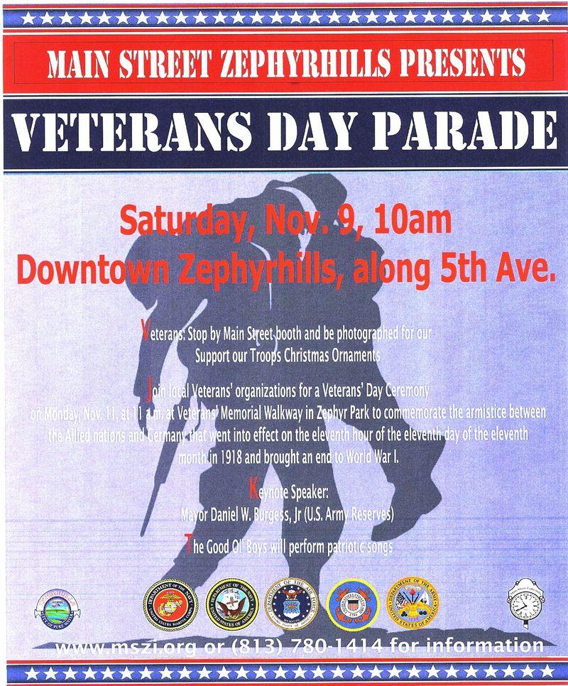 Veterans Day 2013 in Zephyrhills