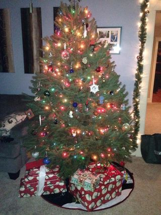 Christmas Tree - Aimee