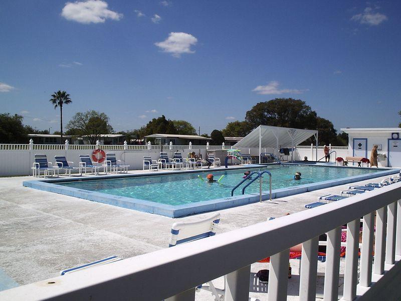 Pool - Betmar Acres