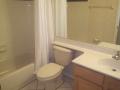 Guest Bath - Braddock