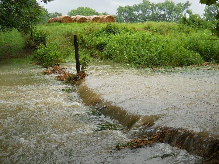 Flooding 1 - Aimee Mixner