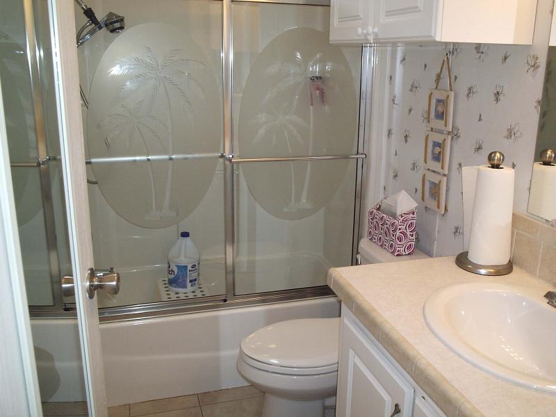 Hall Bathroom - Fun Way